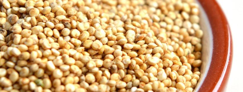 Quinoa, ideale per l'alimentazione senza glutine
